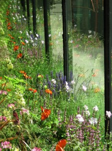 Chelsea Fringe Vienna _ Anita Duller & Hannah Stippl_The Flowerbeds