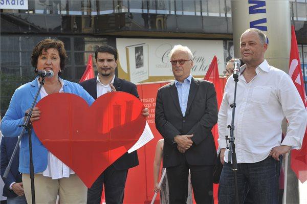 Gurmai Zita EP-képviselő, az Európai Szocialisták Pártja Nőszervezetének elnöke, Mesterházy Attila, az MSZP elnök-frakcióvezetője, Hannes Swoboda, az Európai Parlament szocialista frakciójának vezetője és Szanyi Tibor, az MSZP EP-listavezetője (b-j) a Hajrá Európa! Hajrá MSZP! című rendezvényen a Nyugati téren, egy nappal az európai parlamenti választások előtt 2014. május 24-én. MTI Fotó: Kovács Attila