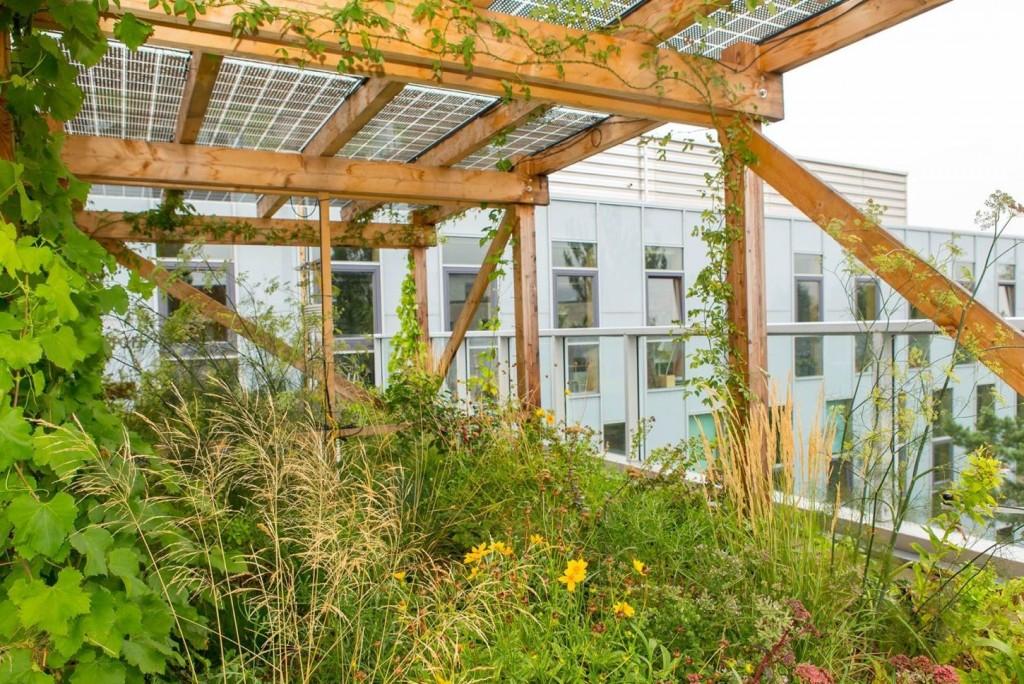 Neuer Photovoltaik-Dachgarten nutzt Geb‰uded‰cher dreifach: Freiraum + Gr¸nraum + PV-Strom
