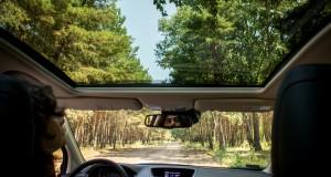 Extrém kilátás az erdei utakon