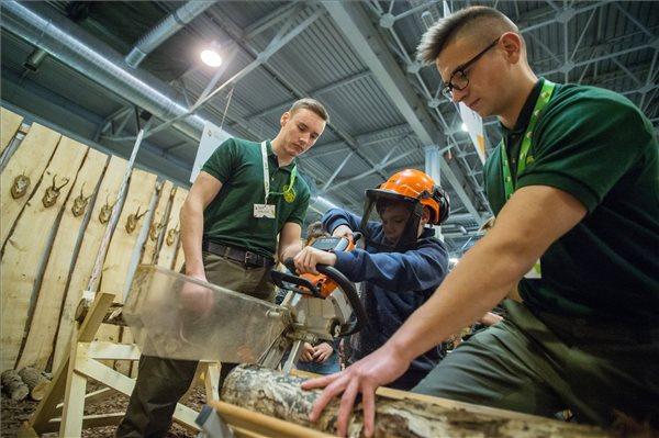 Egy diák fűrészel az erdészeti és vadgazdálkodás technikusi szakma standjánál az idén első alkalommal április 15-16-án megrendezésre kerülő Agrár Szakma Sztár Fesztiválon a megnyitója napján a Hungexpo Budapesti Vásárközpontban 2019. április 15-én. A rendezvényen a szakmai versenyek döntőjével párhuzamosan bemutatkoznak az agrárszakmák. MTI/Balogh Zoltán