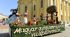 TEVA_viragkocsija_2013-ban_online