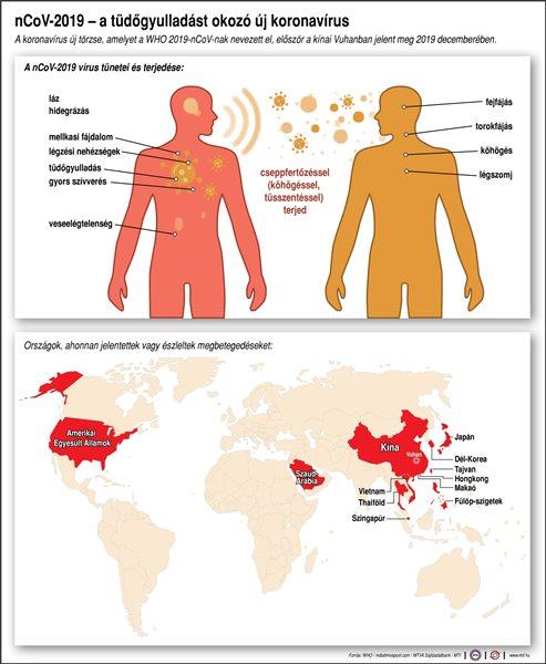 A koronavírus új törzse, amelyet a WHO 2019-nCoV-nak nevezett el, először a kínai Vuhanban jelent meg 2019 decemberében. Országok, ahonnan jelentettek vagy észleltek megbetegedéseket; A nCoV-2019 vírus tünetei és terjedése