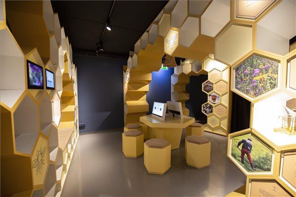 A Kis-Balaton Látogatóközpont interaktív kiállítása a központ átadásának napján Keszthely külterületi településrészén 2020. szeptember 22-én. MTI/Varga György